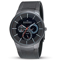 Skagen Men's Grey Titanium Multifunction Mesh Watch.