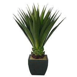 Laura Ashley 43-inch Artificial Aloe Plant