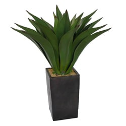 Laura Ashley 48-inch Artificial Aloe Plant
