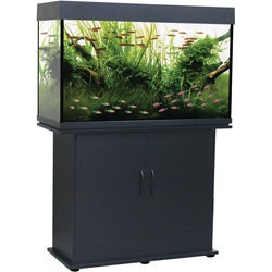 Delta Queen 58-gallon Rectangular Aquarium and Stand