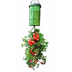 As Seen on TV Vertical Grow Bag