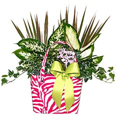 Vitality Hand Bag Pink Tropical Planter