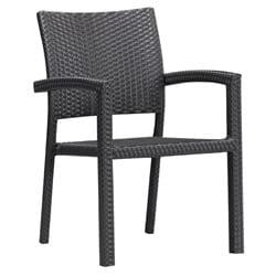 Ashland Outdoor Black Chair (Set of 2)