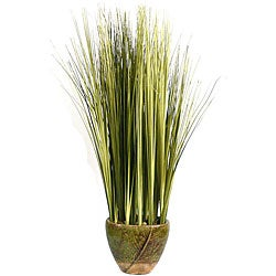 Laura Ashley Onion Grass in Ceramic Container