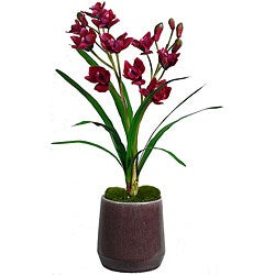 Laura Ashley Red Orchid in Ceramic Container