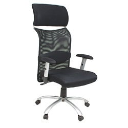 Apire Lumbar Support High Back Office Chair