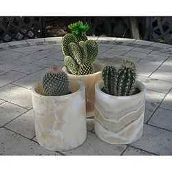 Set of 3 Alabaster Planting Pots (Egypt)