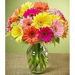 Assorted Cheerful Gerbera Daisies with Large Rose Vase