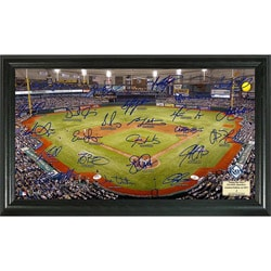 The Highland Mint Tampa Bay Rays Signature Field Mint