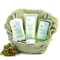 Nikki's Gift Baskets Spa Day Gift Basket