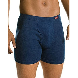 Hanes Men's Assorted Blue Cotton Boxer Briefs (Pack of 4)