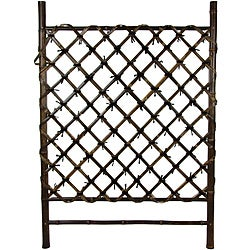 Asian Garden Bamboo Fence Door (China)