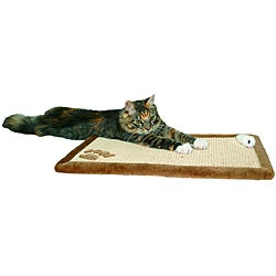 Trixie Pet Products Sisal Scratching Mat