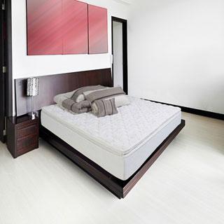 Wolf Sleep Accents Illusion Plush Pillowtop Full-size Mattress and Foundation Set