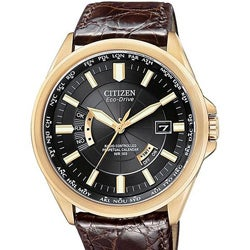 Citizen Men's Eco-Drive Leather Strap Watch