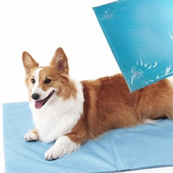 Cool Gel Eco-friendly Technology Anti-slip Comfortable Mat for Pets
