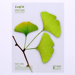 Leaf-it Gingko Large Green Sticky Notes (Pack of 20)
