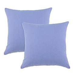 Duck Blue Bonnet S-backed 17x17-inch Fiber Pillows (Set of 2)