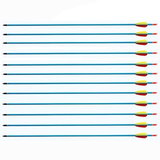 Wizard Archery 30-inch Archery Bow Aluminum Arrows Pack of 12