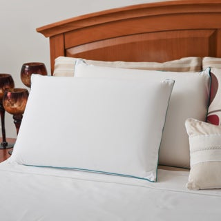 Priage MyGel Memory Foam Traditional Pillow (Set of 2)