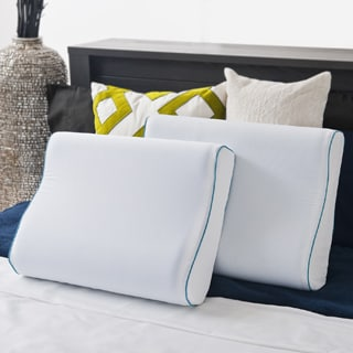 Priage MyGel Memory Foam Contour Pillow (Set of 2)