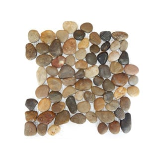 Polished Mixed Colored Pebble Mesh Tile (Pack of 11)
