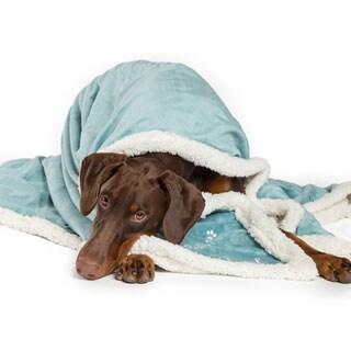 Best Friends by Sheri Pet Throw Blanket in Live Love Bark
