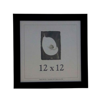 Corporate Picture Frame (12 x 12)