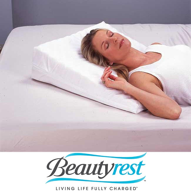 Beautyrest Personal Wedge Pillow at Sears.com