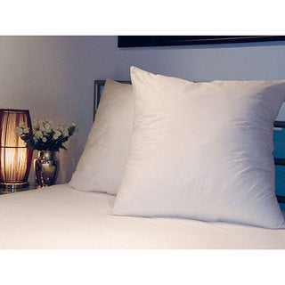 Swiss Lux Decorator 28x28-inch Euro Square Pillows (Set of 2)