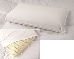 Premium Natural Latex Foam Pillow | Overstock.
