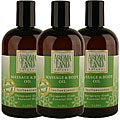 Aromaland Tea Tree and Lemon 12-ounce Body Oils (Pack of 3)