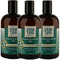 Aromaland Lemongrass and Sage 12-ounce Body Oils (Pack of 3)