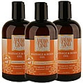 Aromaland Jasmine and Clementine 12-ounce Body Oils (Pack of 3)