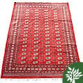 Pakistani Hand-knotted Red/ Ivory Bokhara Wool Rug (6' x 9')