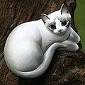 Wood 'Friendly Kitten' Statuette (Indonesia)