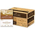 Boise Aspen Recycled Office Paper (Case of 5,000 Sheets)