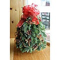 Fresh-cut Maine Balsam Cinnamon Stick 18-inch Tabletop Tree