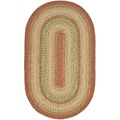 Safavieh Handwoven Indoor/Outdoor Reversible Multicolor Braided Area Rug (4' x 6' Oval)