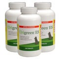 Urigreen 250 Extra Strength Pet Tablets (Pack of 3)