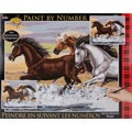 Paint By Number Kit - Mesa Horses