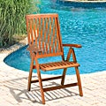 Christopher Knight Home Winslow Deluxe Eucalyptus Wood Outdoor Chair
