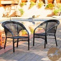 Christopher Knight Home Maria Black Wicker Fan Back Outdoor Club Chairs (Set of 2)