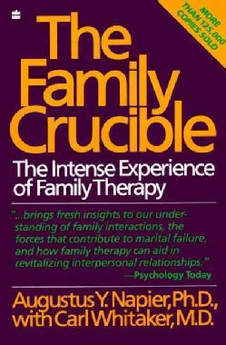 The Family Crucible: The Intense Experience of Family Therapy (Paperback)