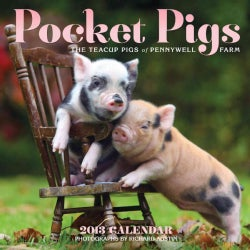 Pocket Pigs 2013 Calendar