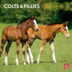 Colts & Fillies 2013 Calendar (Calendar)