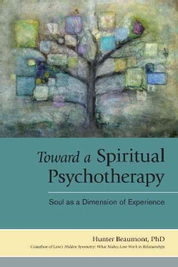 Toward a Spiritual Psychotherapy: Soul as a Dimension of Experience (Paperback)