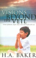 Visions Beyond the Veil: Visions of Heaven, Angels, Satan, Hell and the End of the Age (Paperback)