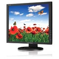 Hanns.G HX193DPB 19&quot; LED LCD Monitor - 5:4 - 5 ms