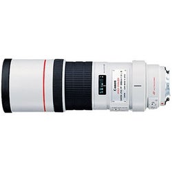 Canon EF 300mm f/4L IS USM Telephoto Lens